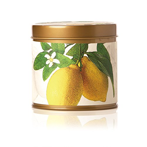 Rosy Rings Signature Tin Candle (Lemon Blossom & Lychee)