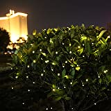 Innootech Outdoor Solar Powered String Lights, 100 Led Lights for Garden, Patio,Party