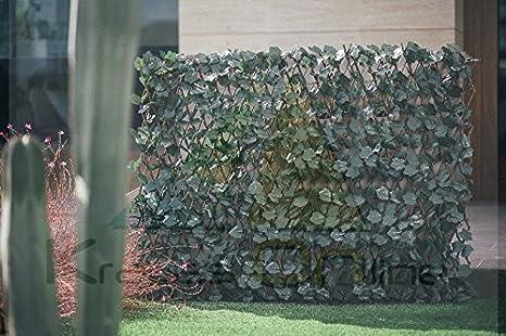 Celosia Extensible con Hojas Basic 1x2: Amazon.es: Jardín
