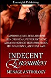img - for Indecent Encounters book / textbook / text book