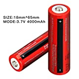 2 Pack 4000mAh 18650 Rechargeable Battery Li-ion
