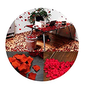 Sevem-D New 1000Pcs/Lot 21 Colors Silk Rose Petals Leaves Artificial Flowers Petals Wedding Decoration Party Decor 73