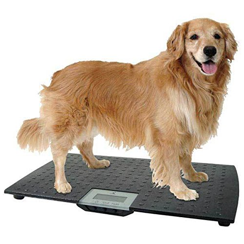 Precision Digital Pet Scales Professional Dog Groomer Vet Shelter - Choose Size(Large - Up To 225 lbs)