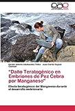 Daño Teratogénico en Embriones de Pez Cebra Por Manganeso, Hector Alberto Villafuentes Tellez and Juan Carlos Gaytan Oyarzun, 3847350420