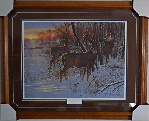(Cynthie Fisher Framed & Matted Wildlife Art Sunrise Retreat )