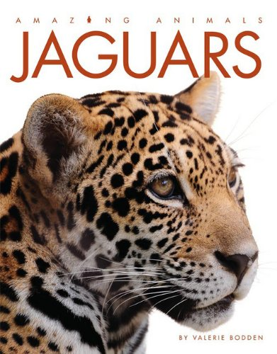 amazing-animals-jaguars