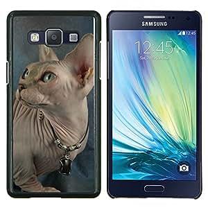 BearCase / Cubierta de protección Caso duro de la contraportada de Shell Plástico /// Samsung Galaxy A5 ( A5000 ) /// Peterbald Donskoy Gato sin pelo