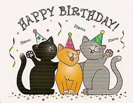 Image Unavailable Not Available For Color Happy Birthday Cats