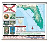 Primary Thematic Wall Map - Florida