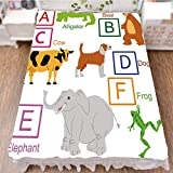 iPrint Bedding Bed Ruffle Skirt 3D Print,Cute Zoo Animals Kids Fun Preschool Teaching,Fashion Personality Customization adds Color to Your Bedroom. by 47.2''x78.7''