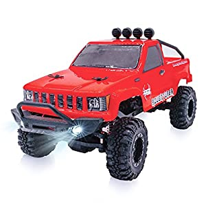 RGT RC Trucks 4x4 Off Road, 1/24 Scale Body with Light, Vehicle 2.4GHz Electric RC Crawler RTR Rock Monster for Kids