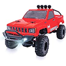 RGT RC Trucks 4x4 Off Road, 1/24 Scale Body with Light, Vehicle 2.4GHzElectric RC Crawler RTR Rock Monster for Kids