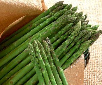 Asparagus Mary Washington Great Heirloom Vegetable BULK 1//4 Lb Seeds