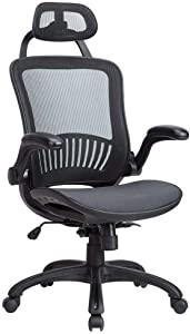 Adjustable High-Back Mesh with Flip-up Arms and Head Rest, Lumbar Support Modern Executive Adjustable Stool Rolling Swivel Chair for Back Pain, Chic Modern Best Home Computer Office Chair, Black