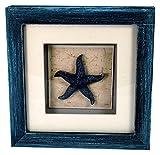 StealStreet LHE-787 Ss-Ug-Lhe-787, 6'' STARFISH Aquatic Life Shadowbox Decorative Frame, Blue