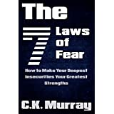 The 7 Laws of Fear - How to Make Your Deepest Insecurities Your Greatest Strengths