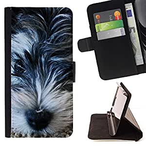 For Samsung Galaxy S5 Mini, SM-G800 Miniature Schnauzer Terrier Basset Beautiful Print Wallet Leather Case Cover With Credit Card Slots And Stand Function