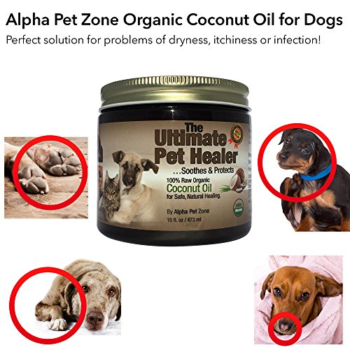 If itchy skin on a dog has another cause, coconut oil is still a good way to treat a dog's condition. Coconut oil contains a compound called lauric acid. This is a type of fatty acid, lipid, and a saturated fat.