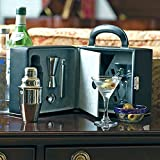Travel Martini Set