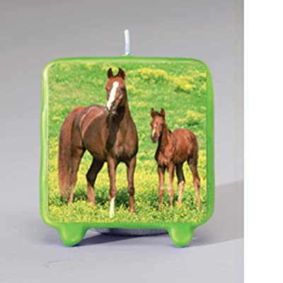 Wild Horses Molded Candle Party Accessory: Toys & Games