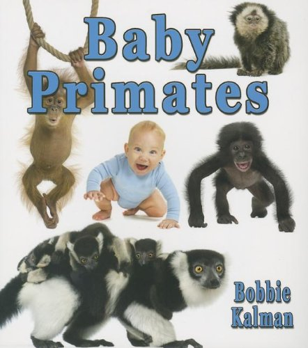 Read Online Baby Primates (It's Fun to Learn About Baby Animals) pdf