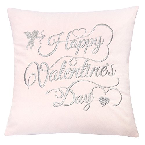 Homey Cozy Valentine's Day Embroidery Pink Velvet Throw Pillow Cover,Cupid Gray Letter Happy Valentines Day Fuzzy Cozy Home Decoration Gift Idea 20 x 20,Cover Only