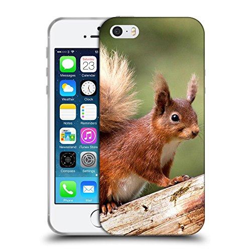 Just Phone Cases Coque de Protection TPU Silicone Case pour // V00004133 Bêtes écureuil roux sur un tronc // Apple iPhone 5 5S 5G SE