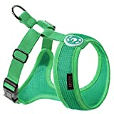 Gooby Choke Free Freedom Mesh Harness Specially Made for Small Dogs, Hunter Green, X-Small