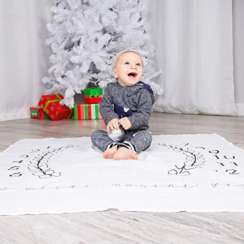 newborn baby milestone blanket great