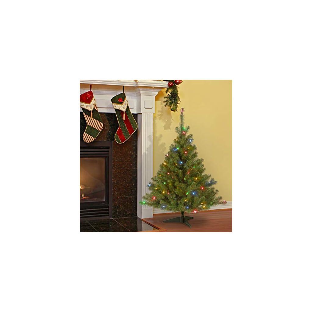 National-Tree-Kincaid-Spruce-Tree-with-Multicolor-Lights