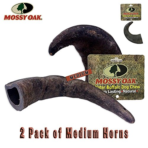 - Mossy Oak 2 Pack of Medium Long Lasting 100% Natural Water Buffalo Horn Dog Chews