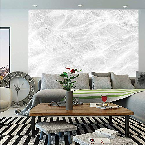 SoSung Marble Wall Mural,Abstract Soft Pastel Toned Onyx Stone Background with Grunge Effects Image Decorative,Self-Adhesive Large Wallpaper for Home Decor 55x78 inches,Light Grey White