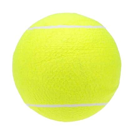 YuandCheng Entretenimiento Deportes Fitness Pelota de Tenis ...