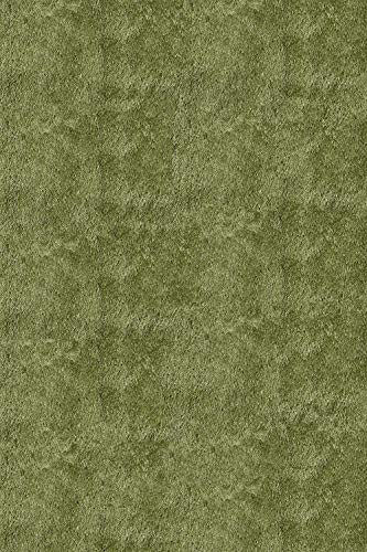 (01APG2030 Luster Shag Collection, Hand Tufted High Pile Shag Area Rug, 2' x 3', Apple Green, Home Decor Area Rugs Runner for Bedroom Living Room Dining Room)