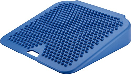 Gymnic Movin' Sit Inflatable Seat Cushion, Blue by Gymnic