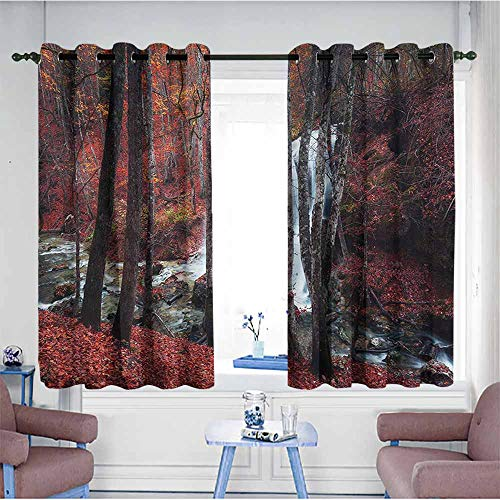 VIVIDX Doorway Curtains,Waterfall,Creek Withering Leaves,Great for Living Rooms & Bedrooms,W72x63L Cold Water Creek Eyelet
