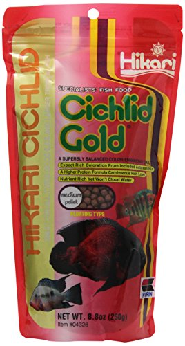 Hikari 8.8-Ounce Cichlid Gold Floating Pellets for Pets, Medium - Cichlid Food