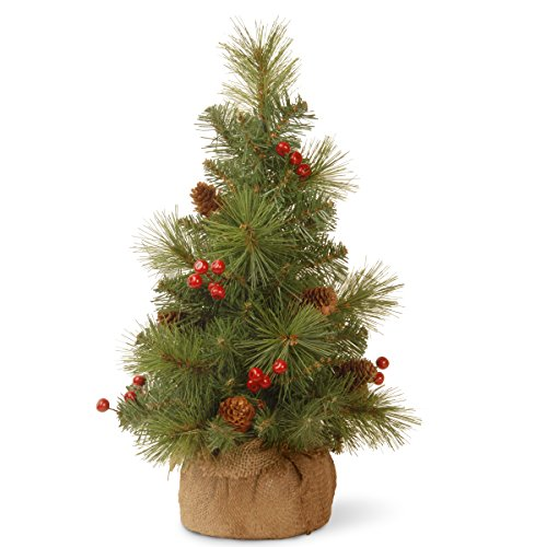 National Tree 18 Inch Everyday Collection Mini Pine Cone and Berry Tree in Burlap (ED7-703-18-1)