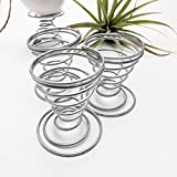 JANOU Air Plant Stand Holder Airplant Container Tabletop Planter Tillandsia Plant Display Pack 3pcs