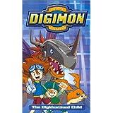 Digimon 4: Digidestined Child
