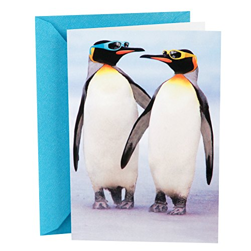 Hallmark Shoebox Funny Anniversary Card (Penguins) (Best Friend Wedding Wishes Funny)