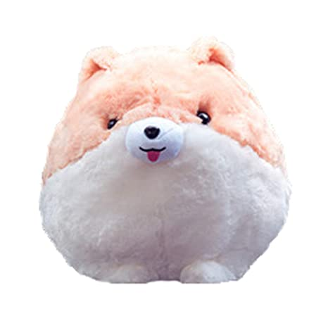 Amazon.com: Pomeranian – Manta de peluche de peluche para ...