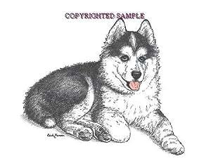 Amazon Com Siberian Husky Puppy 9x12 Drawing By Cindy Farmer Ink