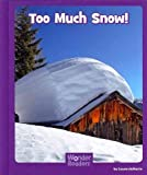 Too Much Snow, Layne deMarin, 1429686375