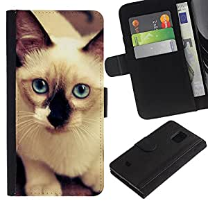 EuroCase - Samsung Galaxy S5 Mini, SM-G800, NOT S5 REGULAR! - Siamese cat white blue feline - Cuero PU Delgado caso cubierta Shell Armor Funda Case Cover