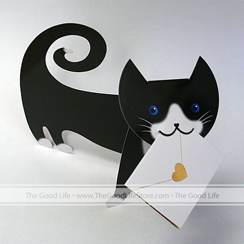 Special Delivery Cards - Tommo (Cat)