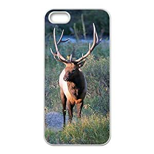Deer Picture Hight Quality Plastic Case for Iphone 5s