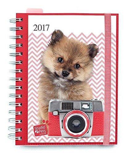 Grupo Erik Editores Studio Pets Dogs - Agenda 2017 Semana Vista, 15.5 x 19 cm