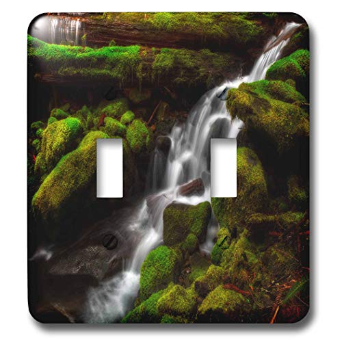 (3dRose Mike Swindle Photography - Landscapes - Creek flowing down over moss covered rocks - Light Switch Covers - double toggle switch (lsp_307822_2))