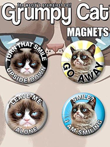 refrigerator cat magnets - 7